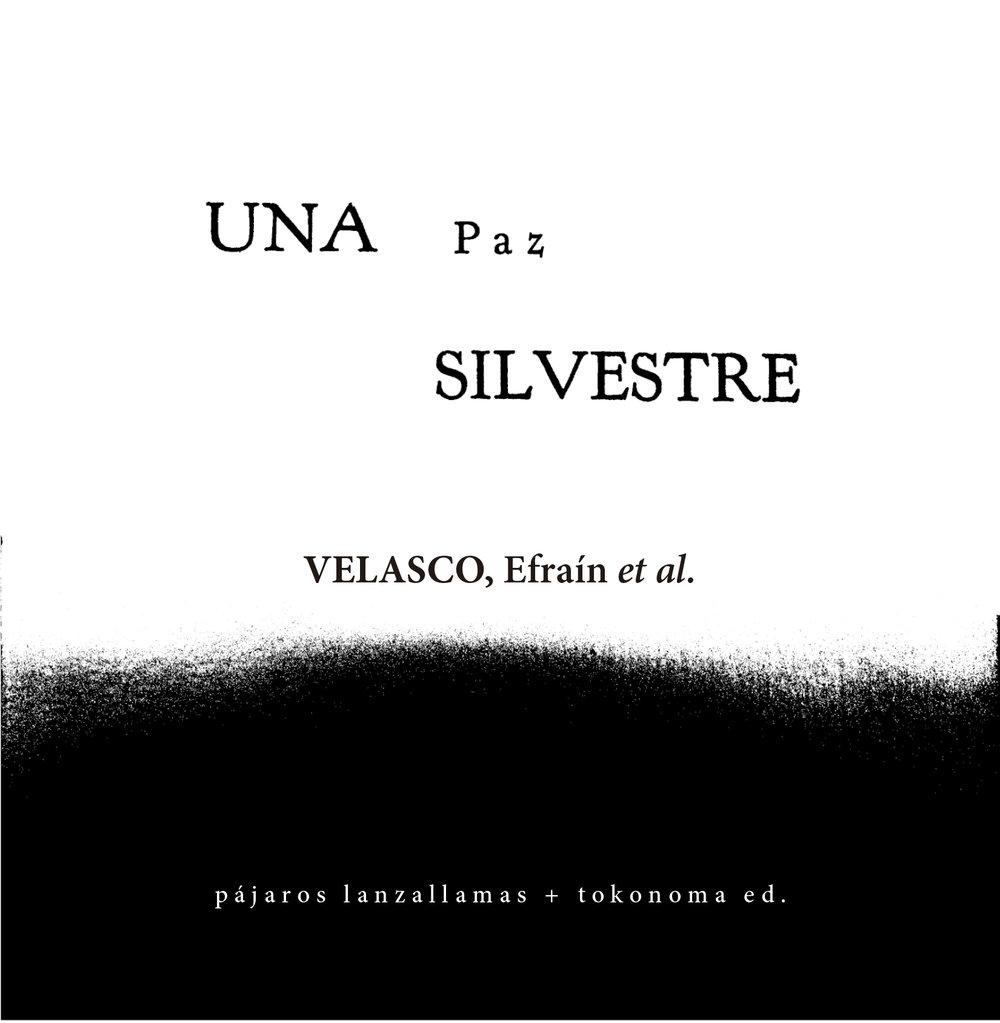 UNAPAZSILVESTRE-1.jpg