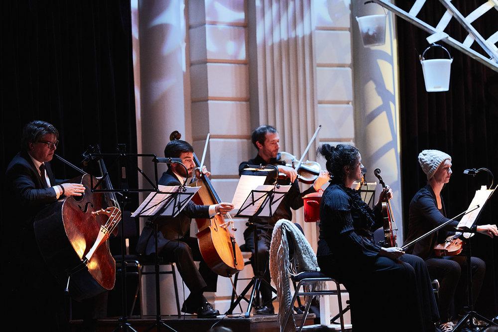 Concertvrienden Koning Klimboom - K55B6398 - Milagro Elstak - 2017-10-22 16.15.39AAA.jpg