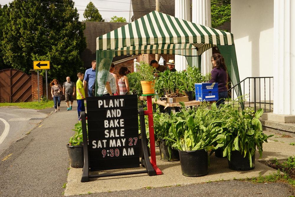 Plant Sale-10.jpg