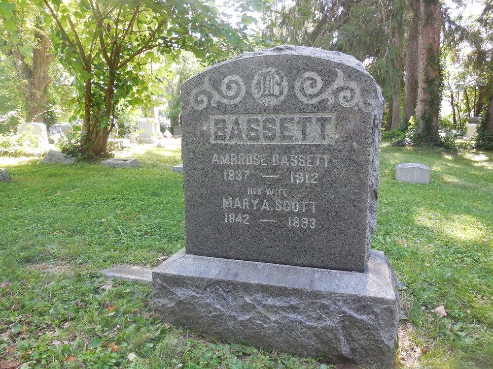 Bassett.JPG