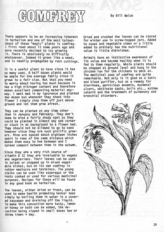 seed-v2-n6-june1973-19.jpg