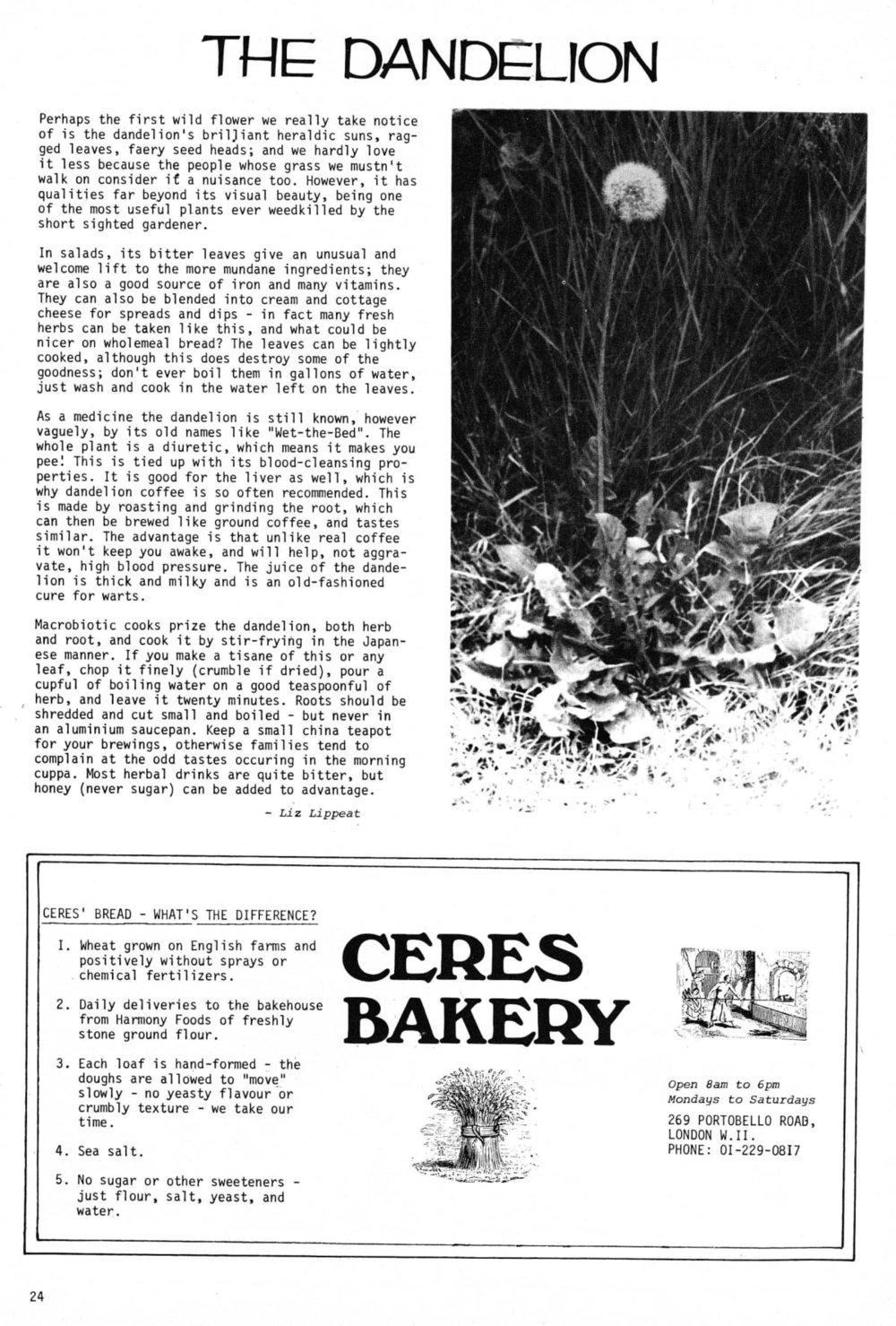 seed-v2-n7-july1973-24.jpg