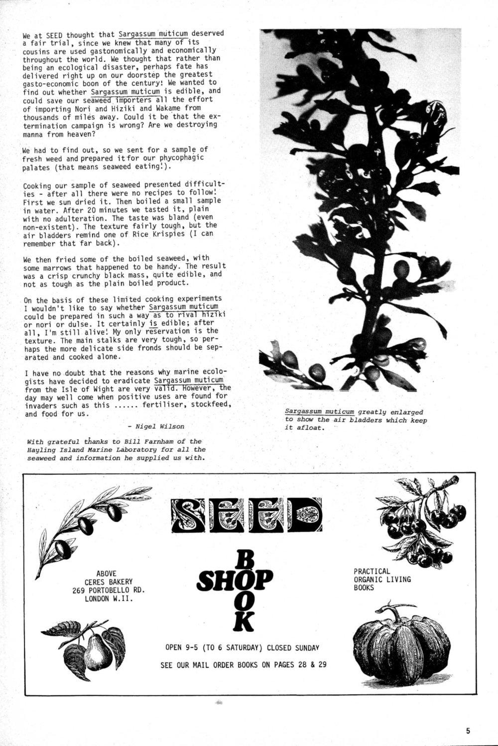 seed-v2-n7-july1973-05.jpg