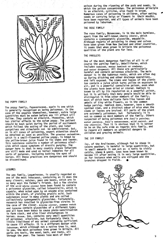 seed-v2-n11-nov1973-09.jpg