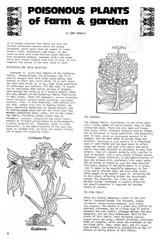 seed-v2-n11-nov1973-08.jpg
