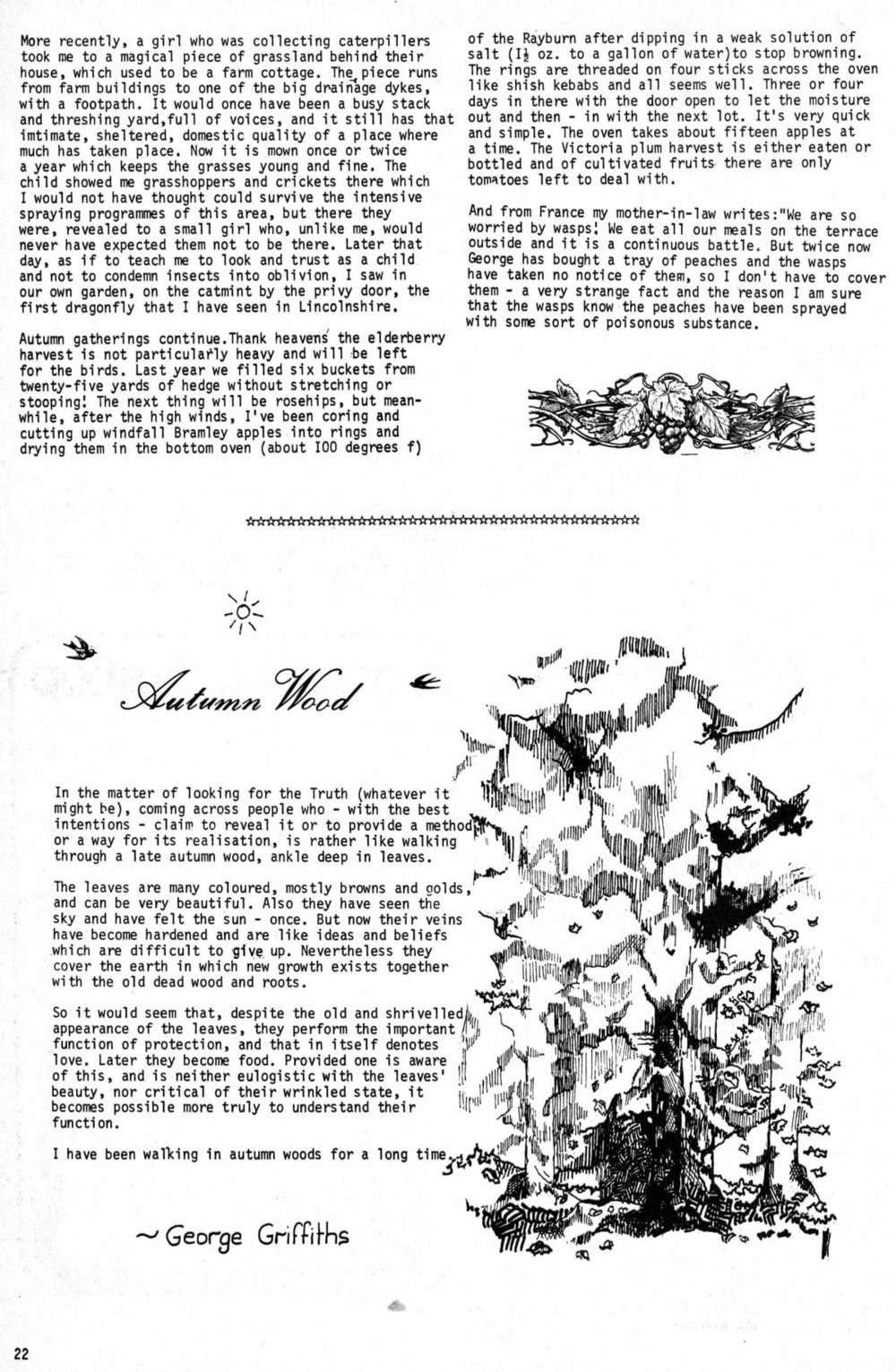 seed-v3-n10-oct1974-22.jpg