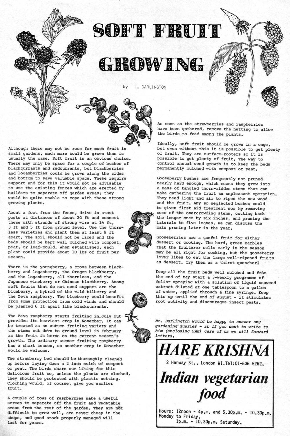 seed-v4-n4-april1975-19.jpg