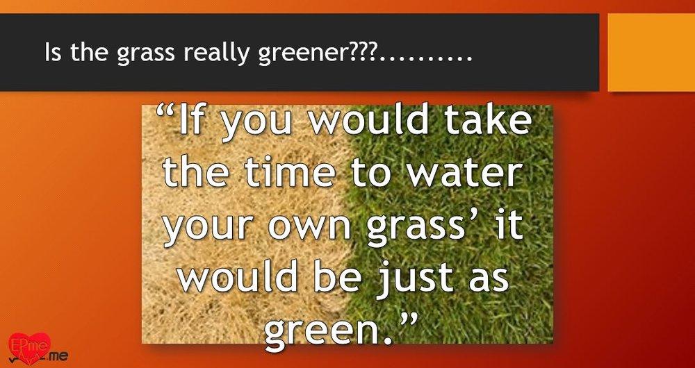 E1 - grass.JPG