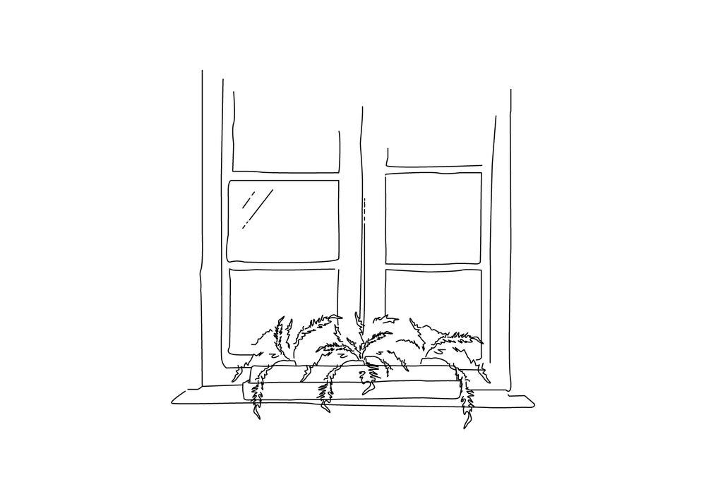 à chaque saison son emplacement - L'hiver, rapprochez vos plantes des sources de lumière.L'été protégez les du soleil direct en les éloignant de vos fenêtres.