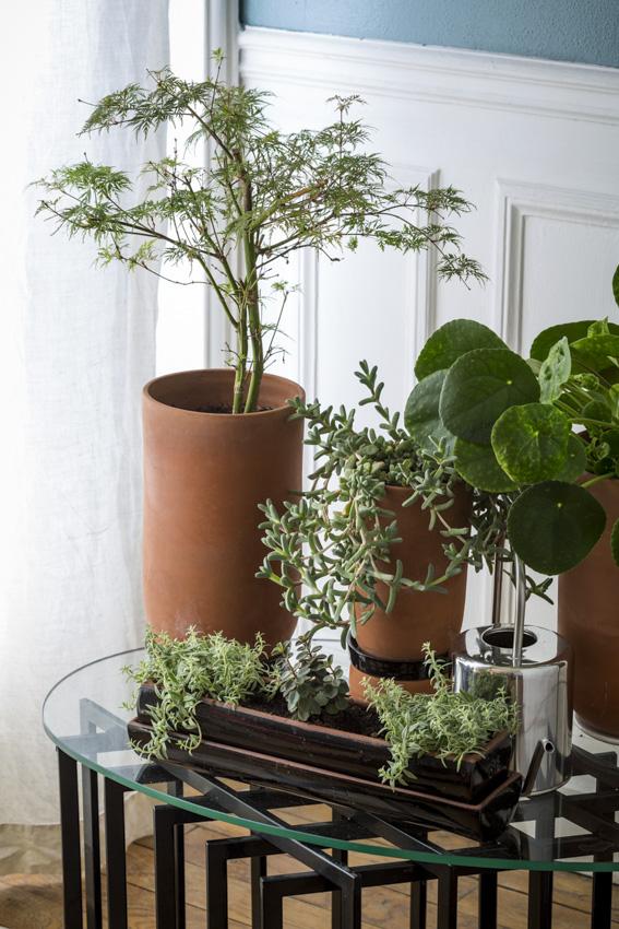 Agencez pour aménager un espace vert -