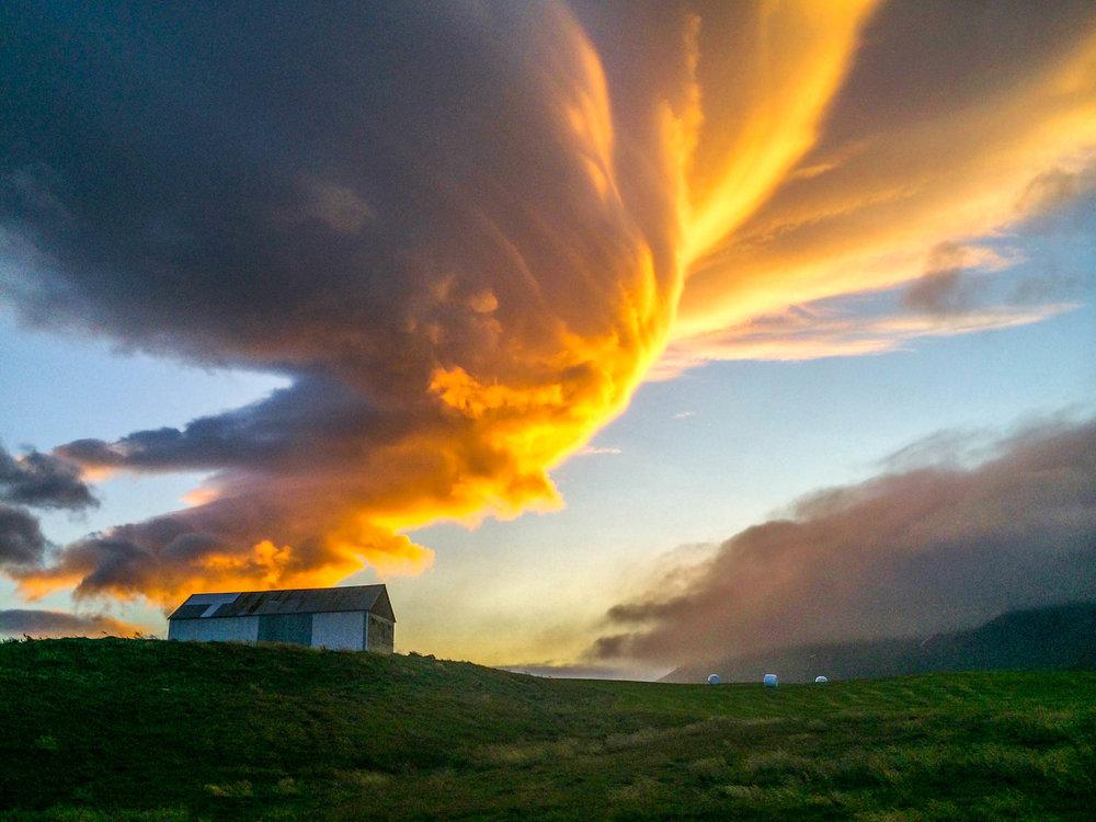 Jen Seiser Landscape 50.jpg