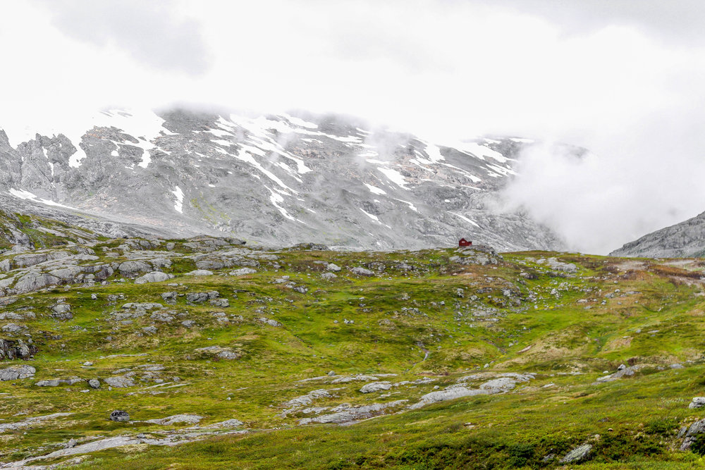 Jen Seiser Landscape 10.jpg