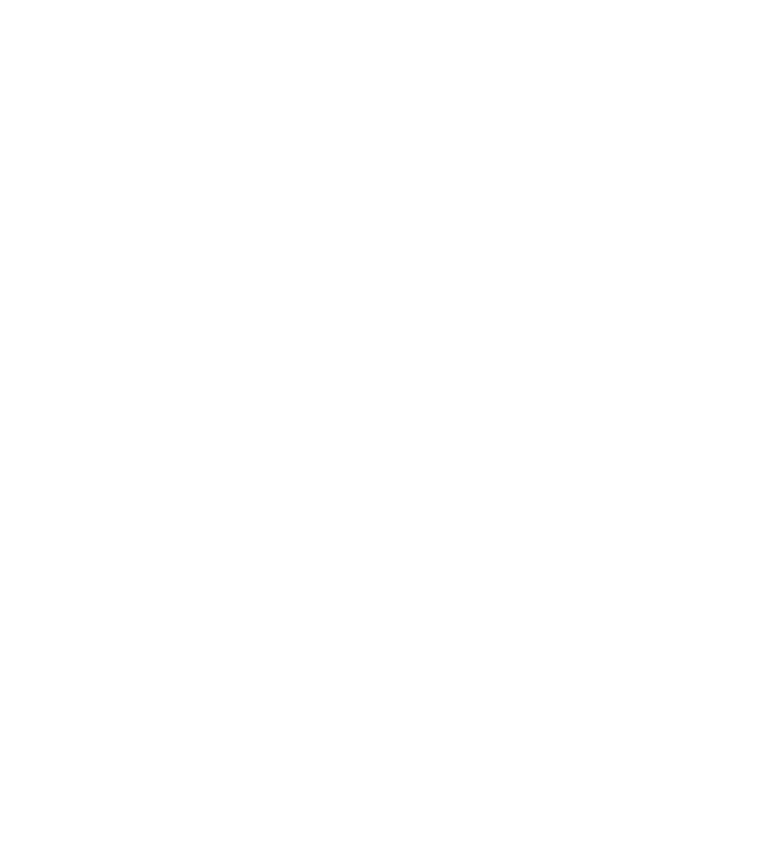 LIGHT RIDGE STUDIO