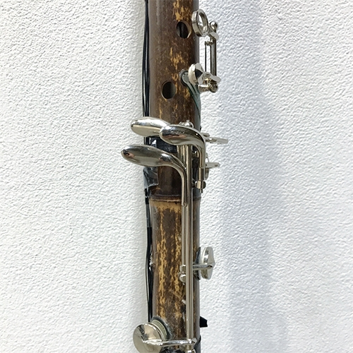 Transplantation  (2018)  A modified traditional instrument combined with digital technology.