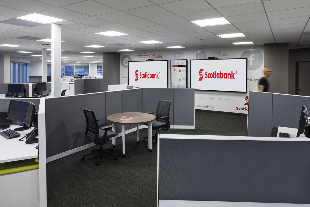 170919-Scotiabank-020c.jpg