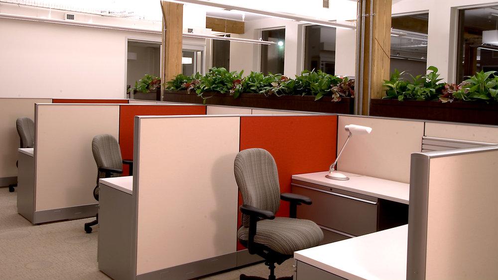 cubicle2.jpg