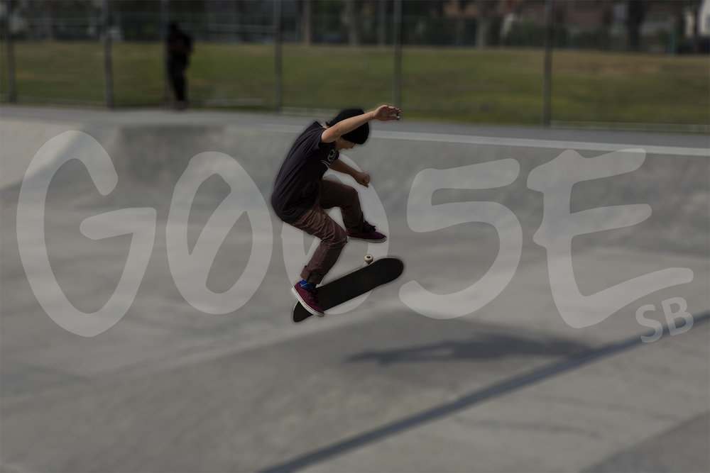 skate 2.jpg