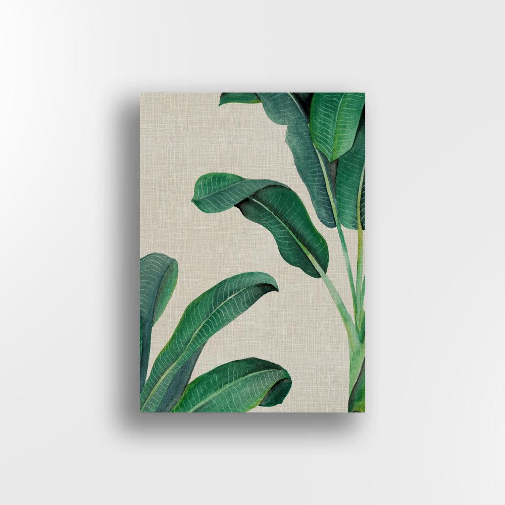 Banana Palm / Linen Background