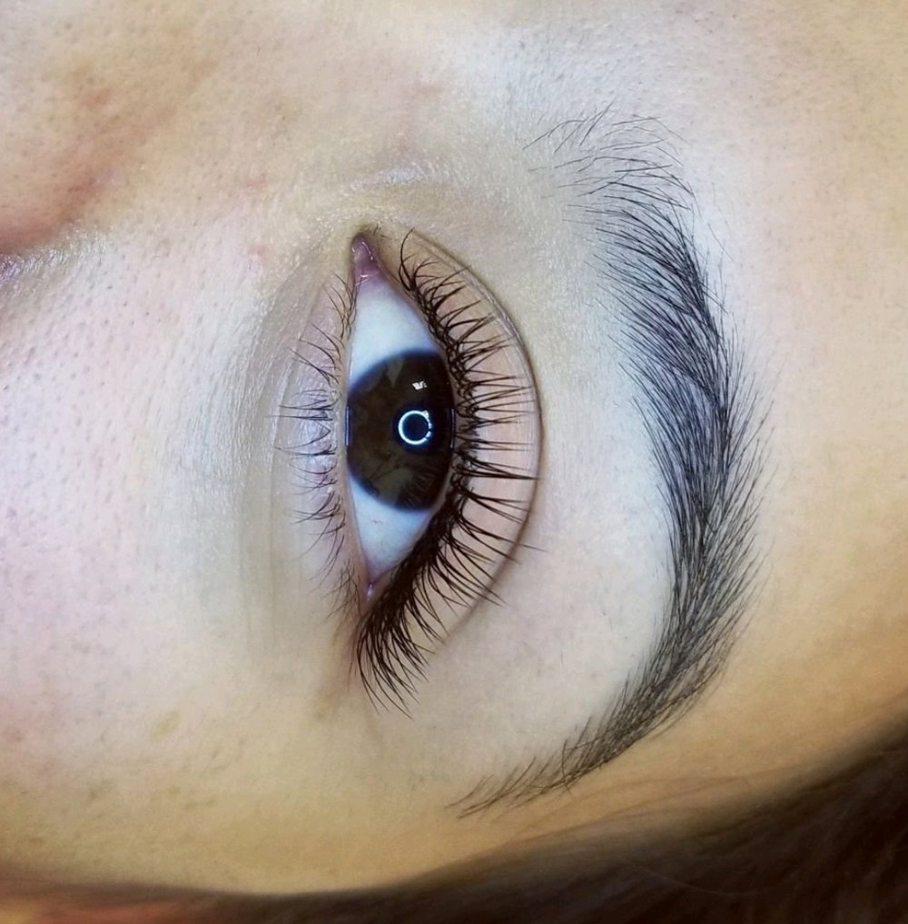 Eyelash Extensions Bold Beauty Co