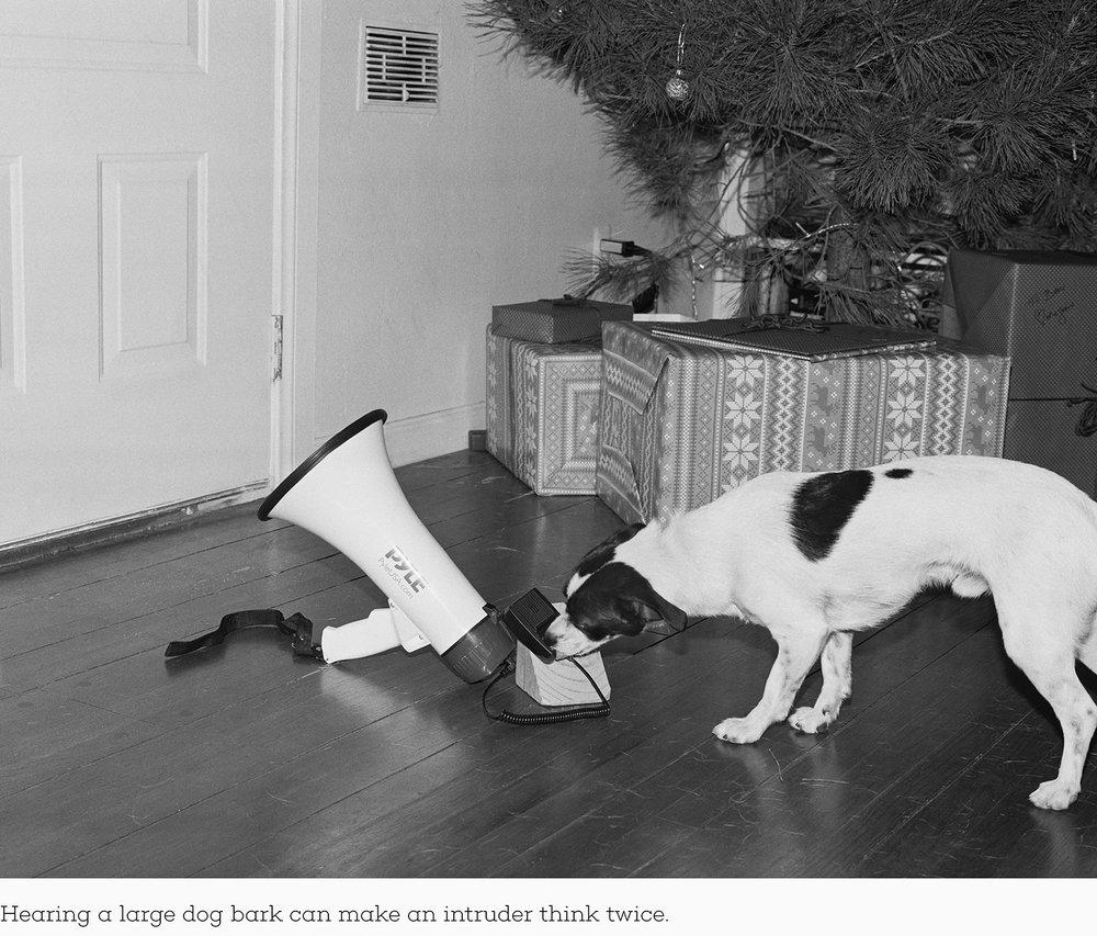 Hearing a large dog bark can make an intruder think twice.jpg