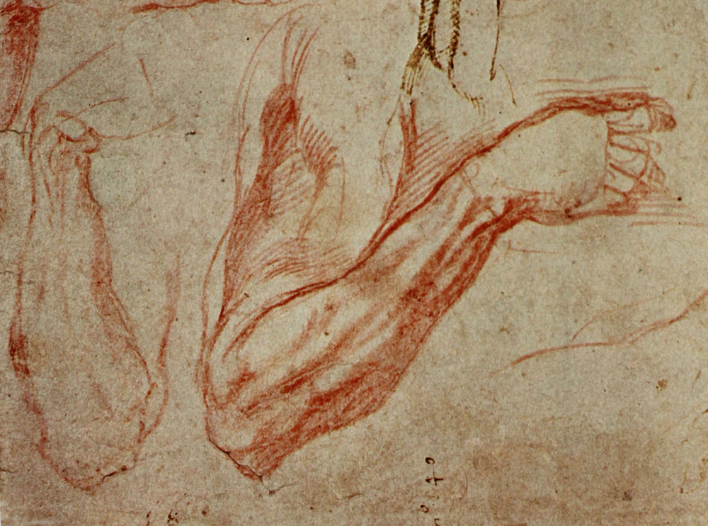 Michelangelo Arm Studies The Meditation Of Art
