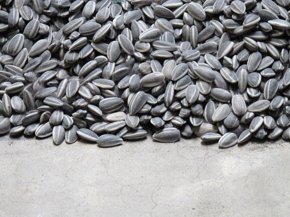 ai-weiwei-sunflower-seeds.jpg