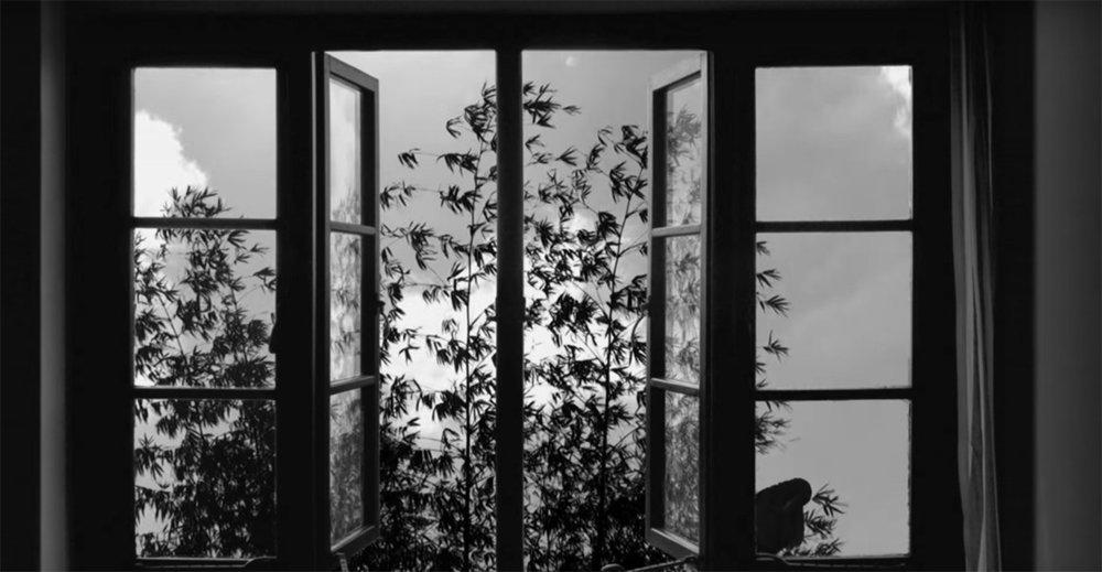 kiarostami-24-frames.jpg