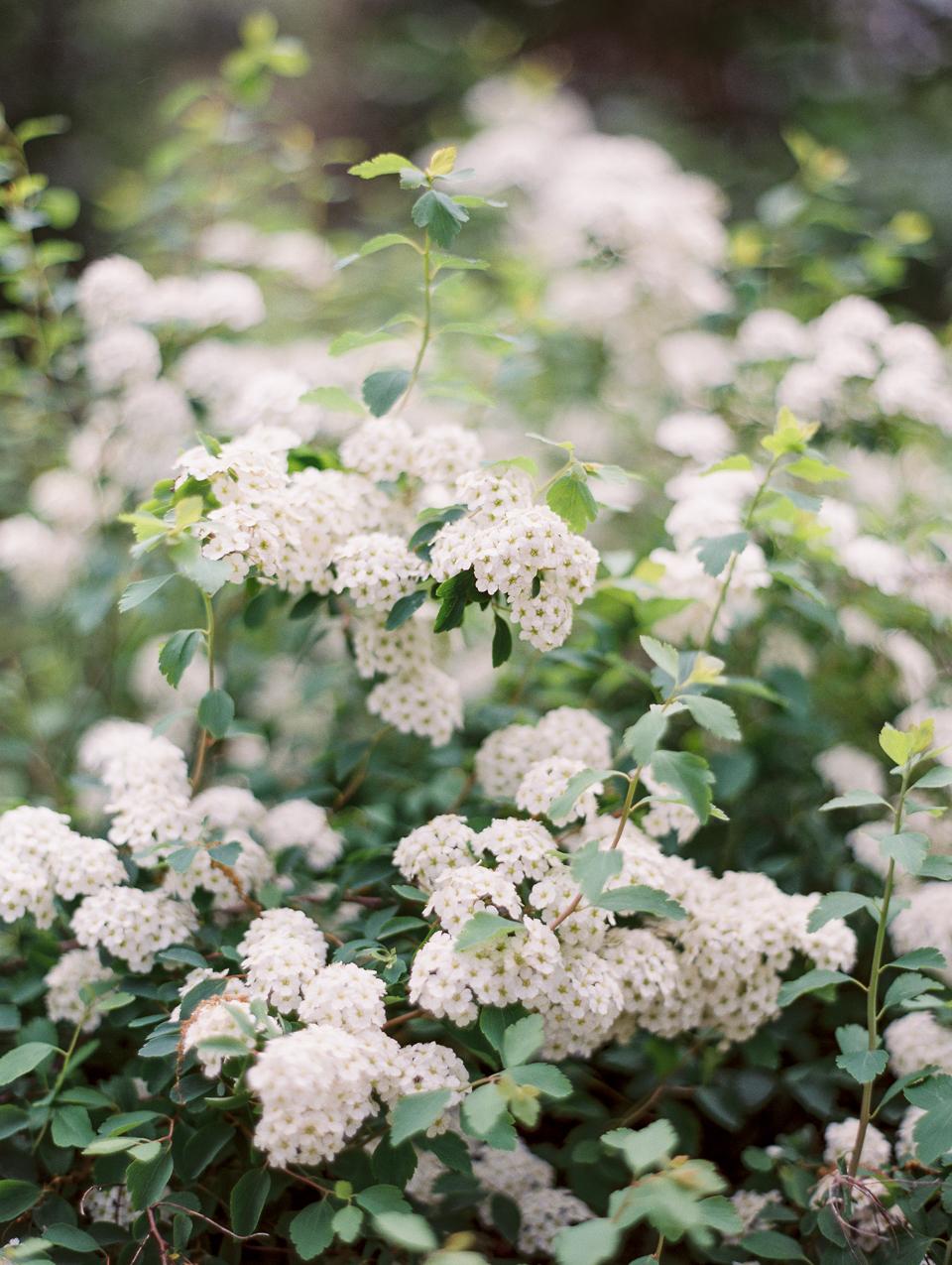 planning for floral designers