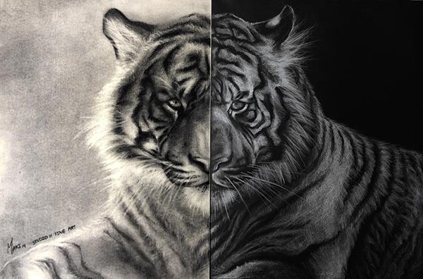 Half-and-Half Tiger
