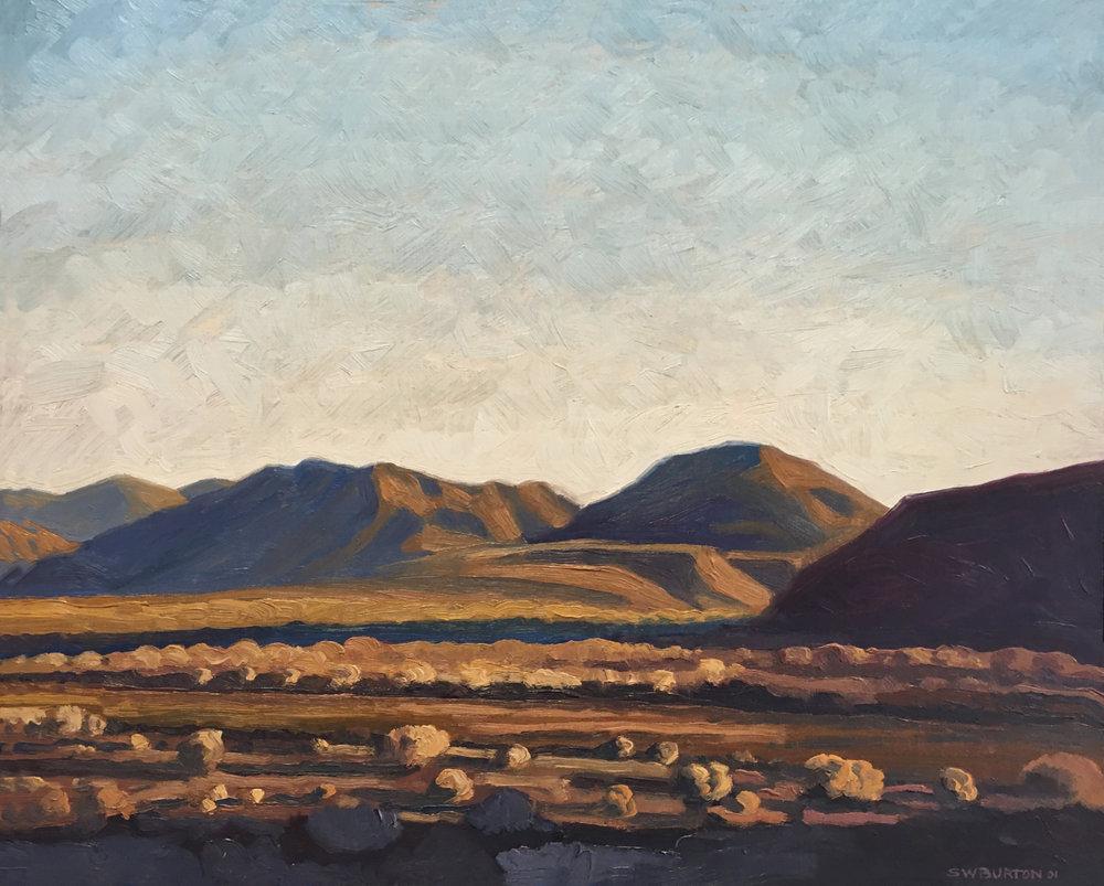 Borrego Gold  16x20  Oil on Panel  2001