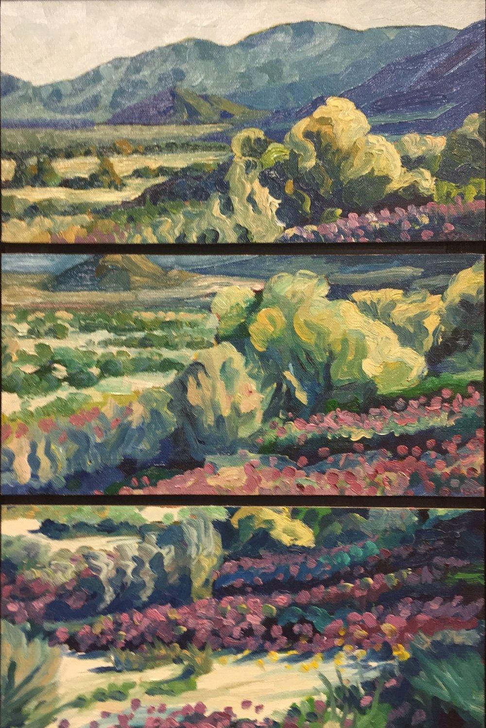 Borrego Springs  16x16  Oil on Canvas  2007
