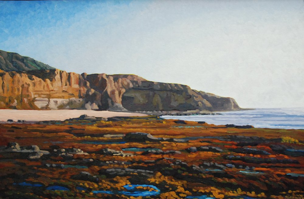 Low Tide on The Boil, Sunset Cliffs       23.5x35.5     Oil On Panel       2006