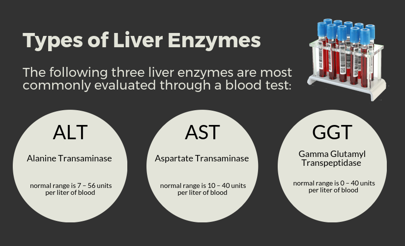 Types-Of-Liver-Enzymes-Piktochart.png