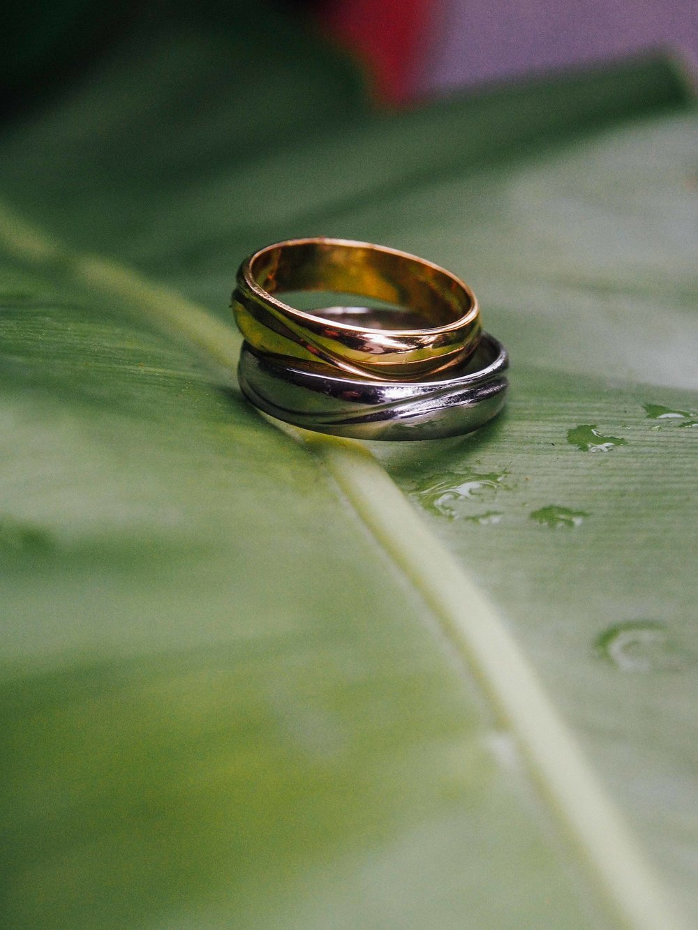15 - Wedding bands.JPG