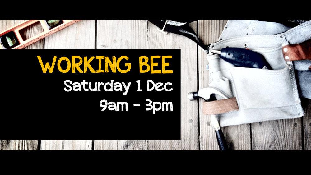 Working Bee Dec.jpg