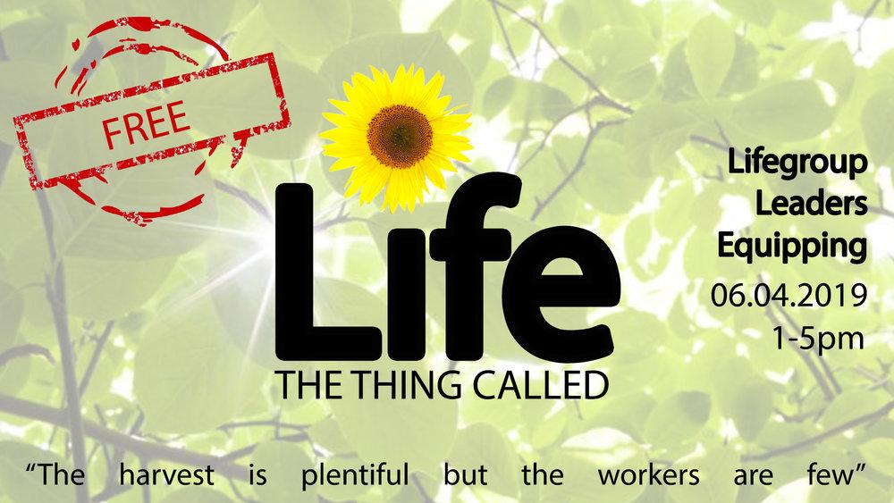 Lifegroup Training.jpg
