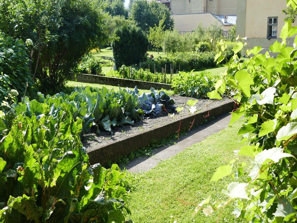Im GartenBEA 18082017-058.jpg