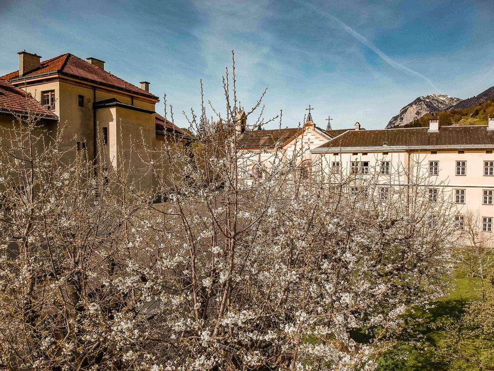 2_Frühling im Klostergarten -Sonne im Osten 201804140001.jpg