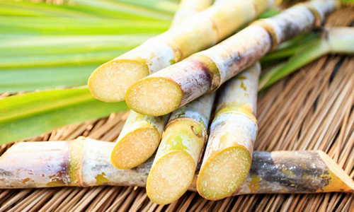 SUGARCANE - Sugarcane is excellent source of minerals.BENEFITS: Supports hair growth.