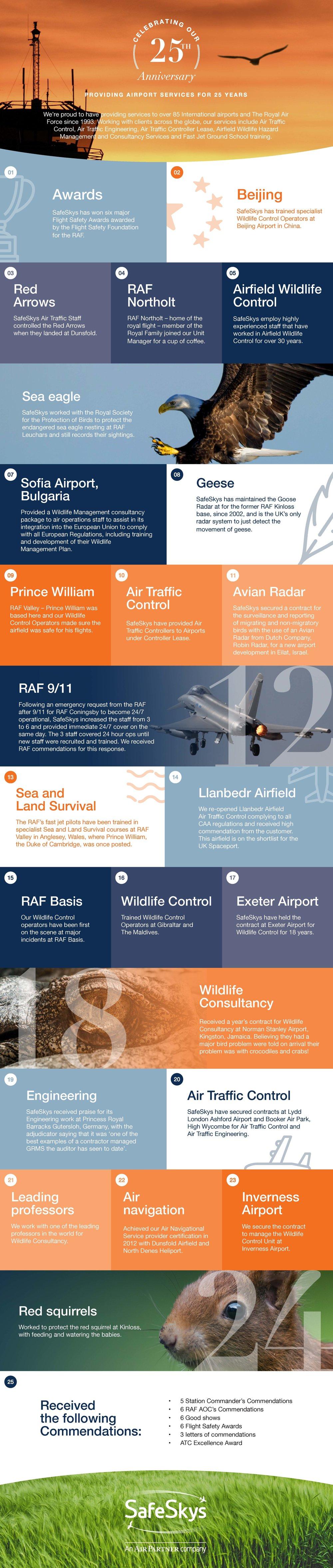 SafeSkys Infographics.jpg