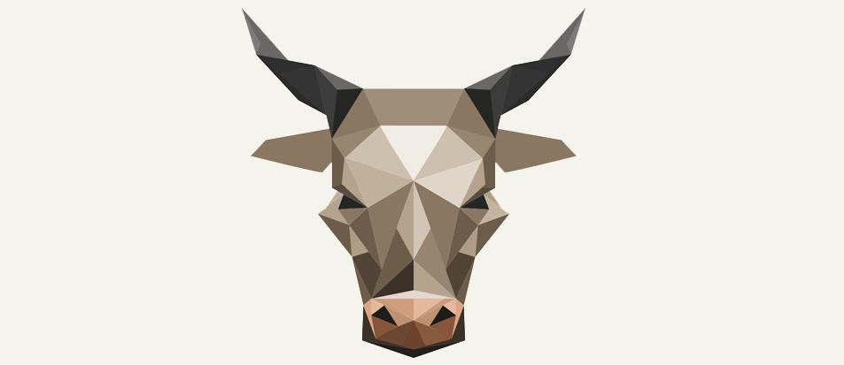 bull-cropped-1.jpg