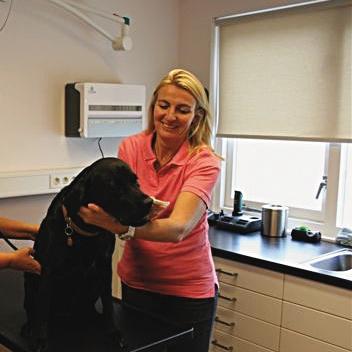 Karen van Wijk - Mijn naam is Karen van Wijk. Ik ben al 25 jaar dierenarts en vind het nog steeds het leukste beroep dat ik me kan voorstellen. De combinatie van contact met mensen en dieren maakt het uniek. In 1992 ben ik Dierenartspraktijk Westwijk begonnen en intussen zijn we gegroeid tot een mooie kliniek met 4 dierenartsen en 5 assistentes.