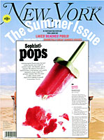 hil_new_york_magazine_063008_thumb.jpg