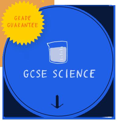 GCSE.png