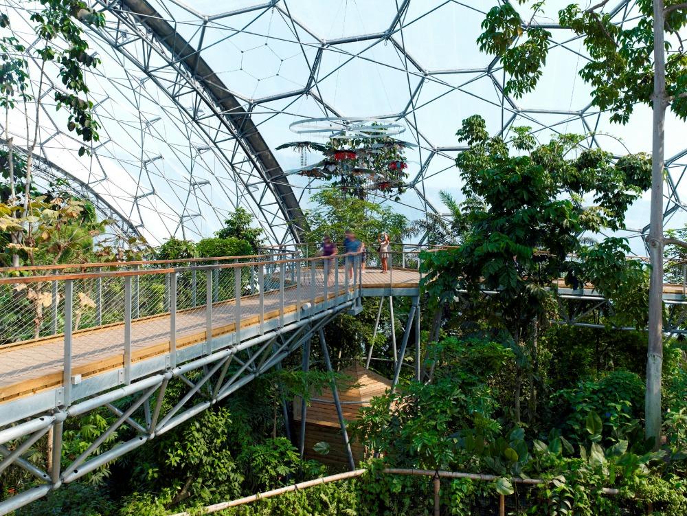 Aerial-Walkway-Eden-Blue-Forest-JTA-6.jpg