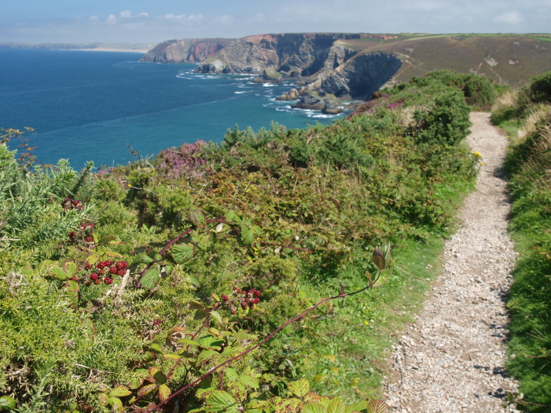 Coastal-Path-St-Agnes.jpg