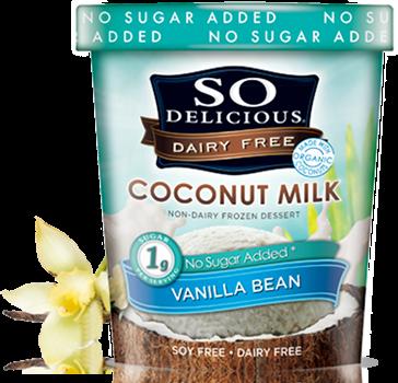 Is So Delicious No Sugar Added Ice Cream Ketogenic Friendly? — Savage Fuel