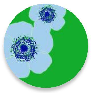 Poppy Blue-Lime Stripe