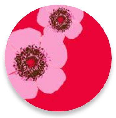 Poppy Pink Stripes
