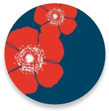 Poppy Red Navy